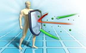 Maitake a stimulace imunitního systému