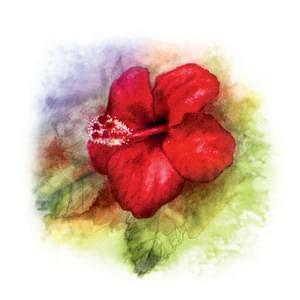 100 - Rudý květ